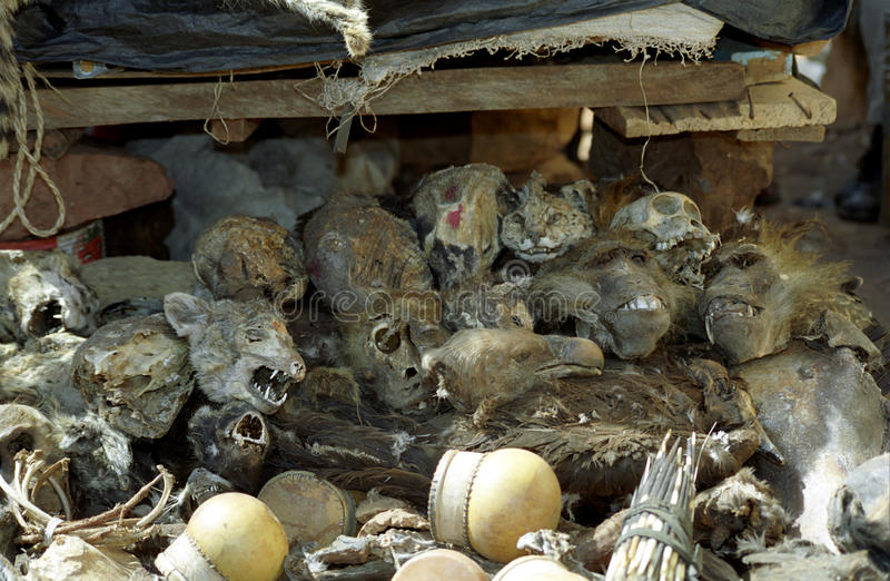 shaman du marché de Bamako Mali image stock