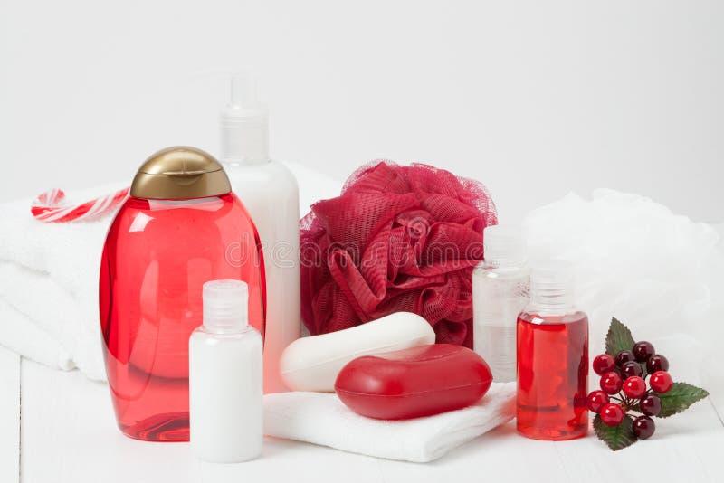 Shampoo, Stück Seife und Flüssigkeit Toilettenartikel, Badekurort-Ausrüstung stockfotografie