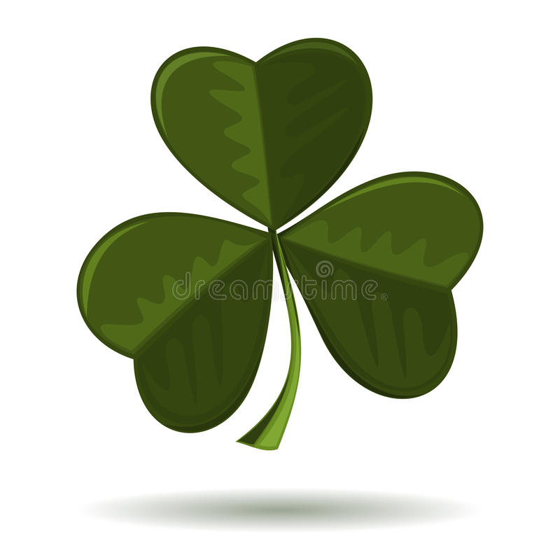 Shamrock, seamrog, trifoliate clover - symbol of Ireland and celebration of St. Patricks Day. Vector image of clover isolated on a white background. Symbol of vector illustration