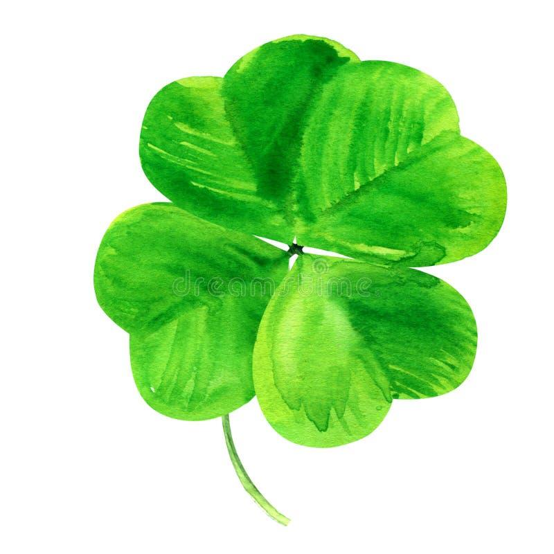 Shamrock, zielona koniczyna cztery leaf, Patrick dnia symbol, odizolowywający, ręka rysująca akwareli ilustracja na białym tle ilustracja wektor