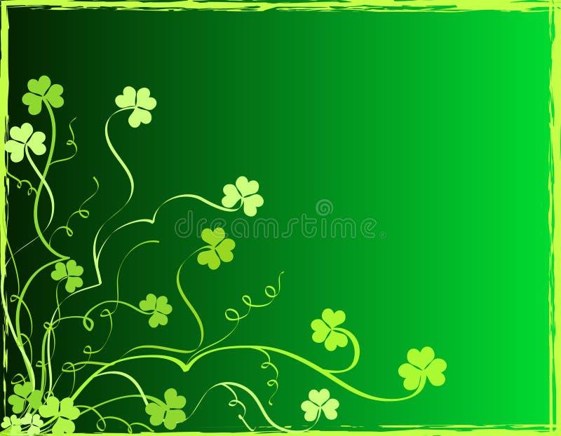 Shamrocks foliage vector illustration