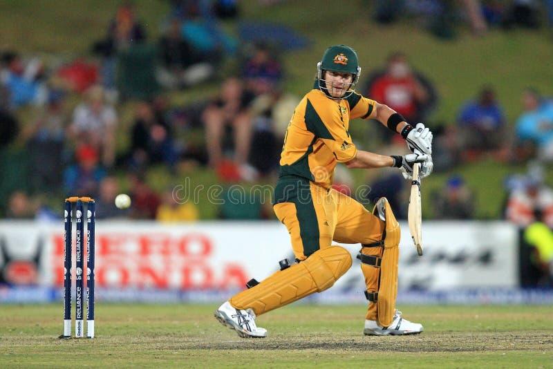 Shane Watson Australian Batsman arkivbild
