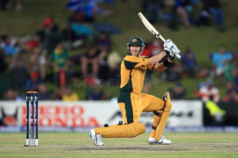 Shane Watson Australian Batsman imágenes de archivo libres de regalías
