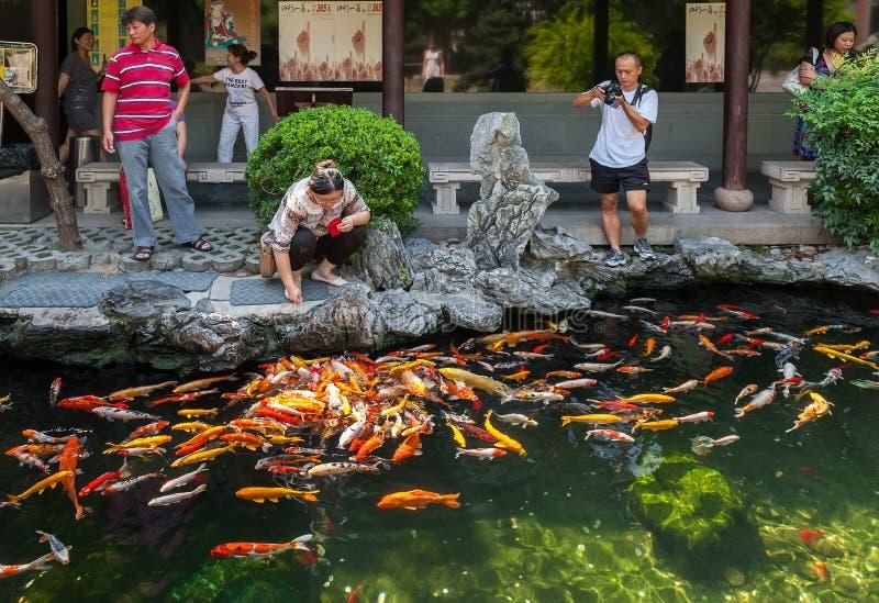 Shanghai, China: royalty-vrije stock fotografie