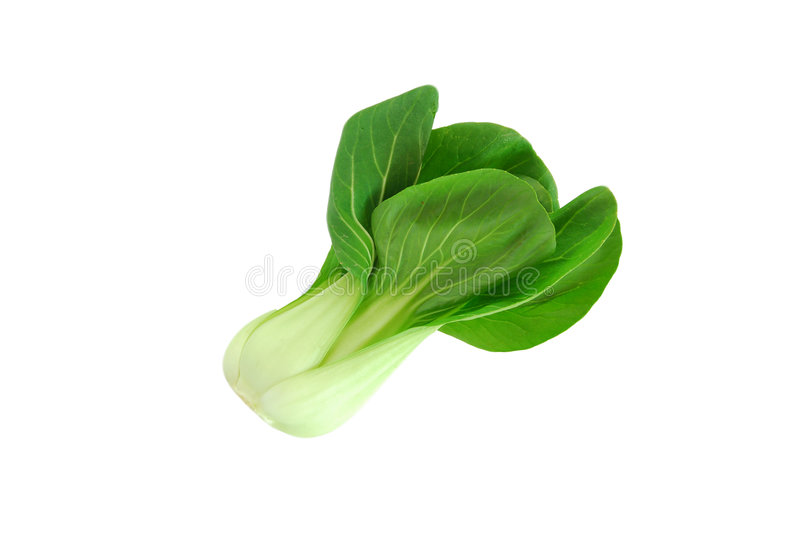 Shanghai green vegetable royalty free stock images
