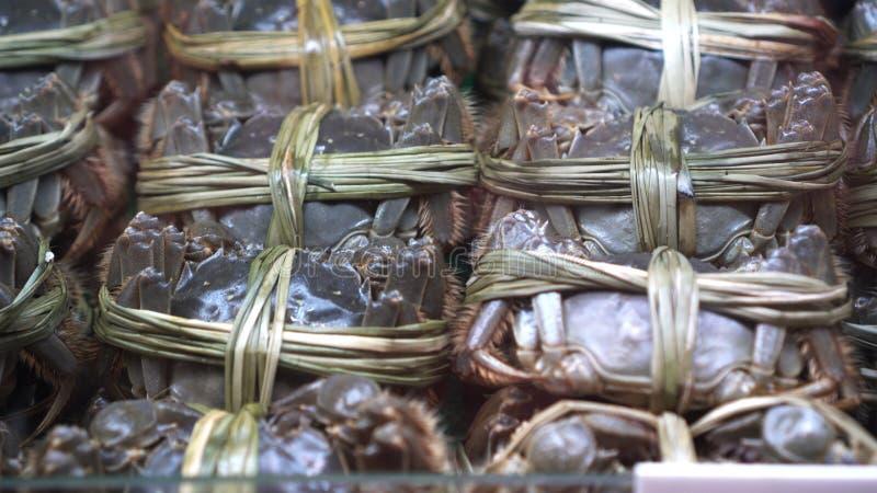 Shanghai owłosione mitten kraba Chiński jesienny delikatny sezonowy owoc morza w schłodzeniu obrazy stock