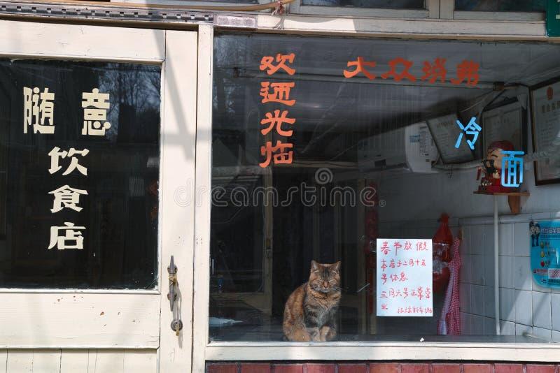 Shanghai-Restaurant stockbilder