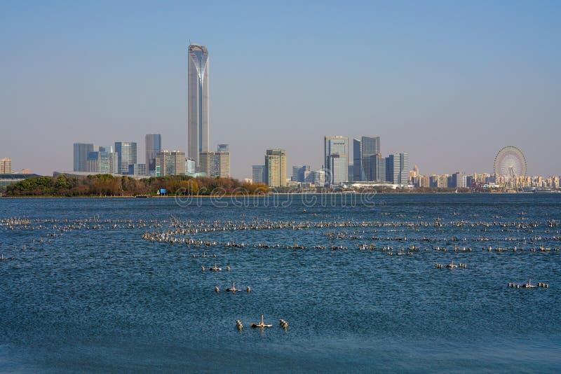 Shanghai Skyline, Blick vom Bund, China lizenzfreie stockfotografie
