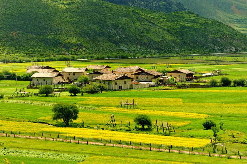 Shangri-La Ranch scenery. July 2009 Shangri-La, the sun a golden pasture, clouds in the sky after another, form a beautiful landscape painting royalty free stock photos