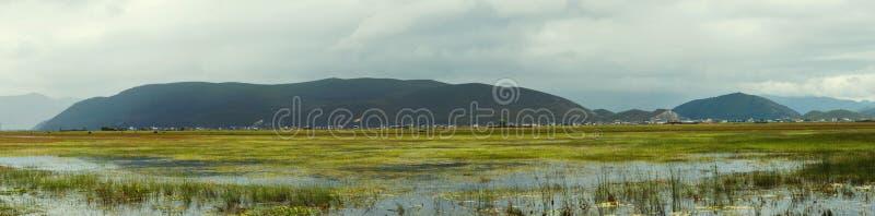 Shangri la wetland landscape. Wetland landscape at lapa hai , shangri la , china in cloudy day royalty free stock photo