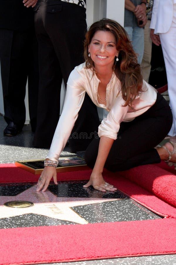 Shania Twain royalty-vrije stock foto's