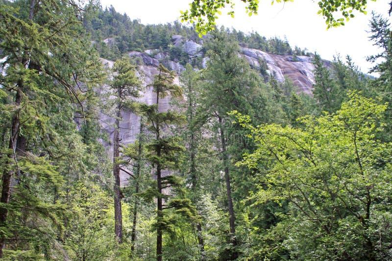 Shannon Falls Provincial Park, Canada royalty-vrije stock afbeelding