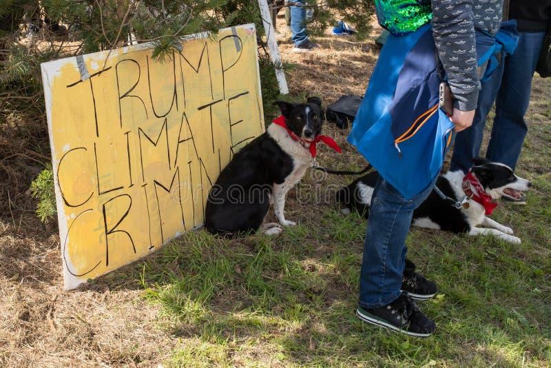 Shannon Town, Irlanda, giugno 5, 2019: Anti proteste del cane di Trump a Shannon Airport, Irlanda immagine stock libera da diritti