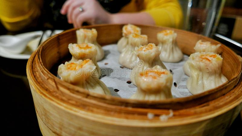 Shao MAI lizenzfreies stockfoto