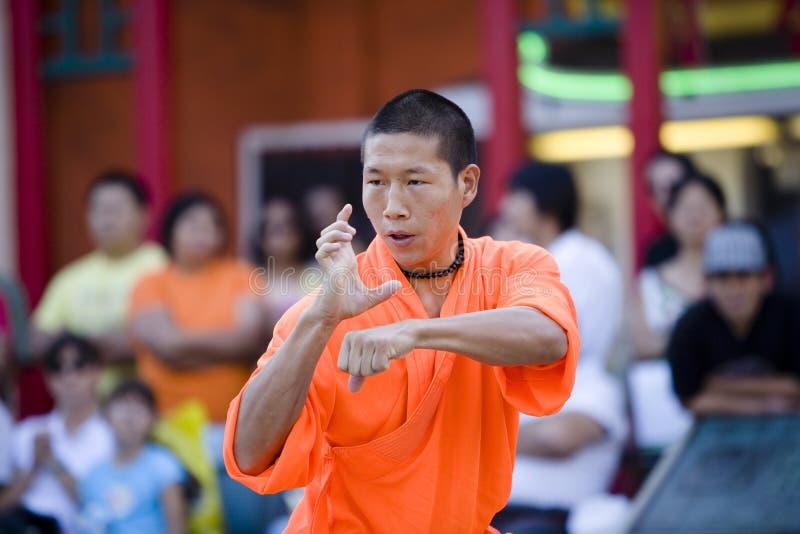 Shaolin Kung Fu 17 stockfotos