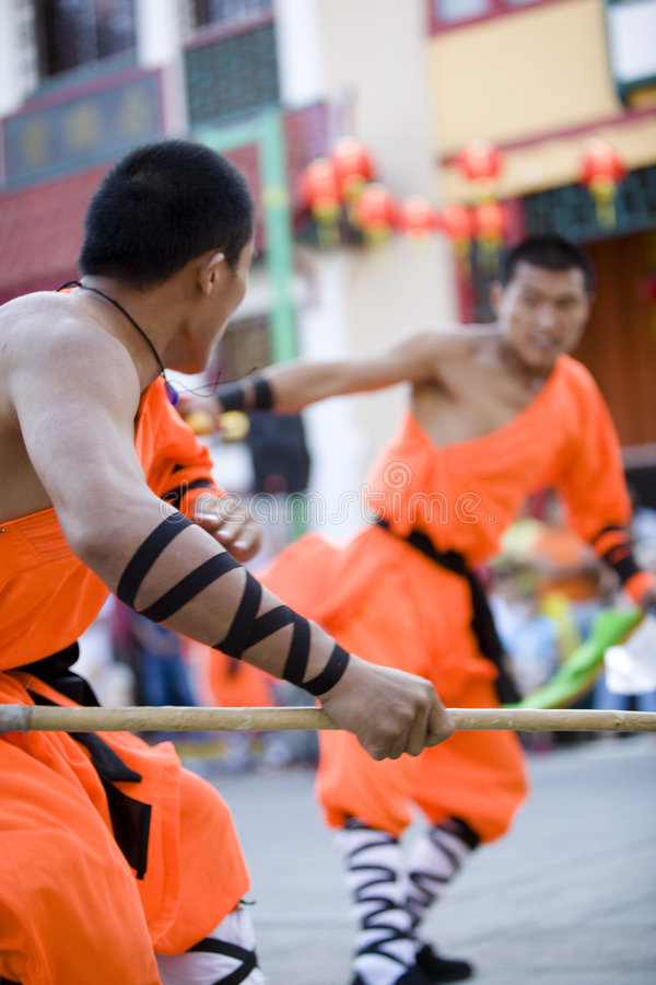 Shaolin Kung Fu 19 stockbilder