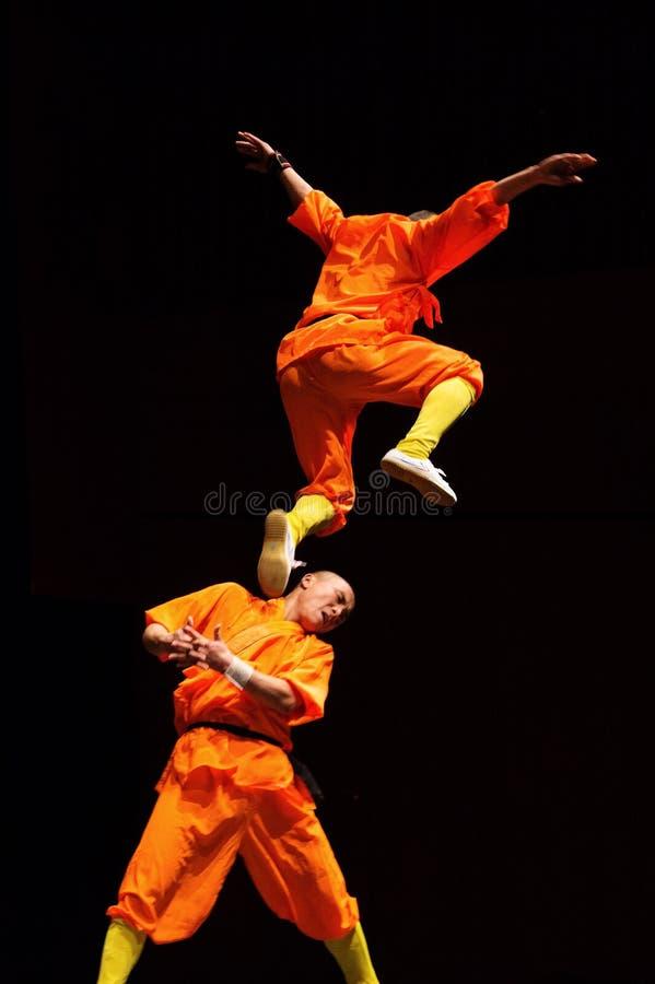 Shaolin-Sprung lizenzfreies stockbild