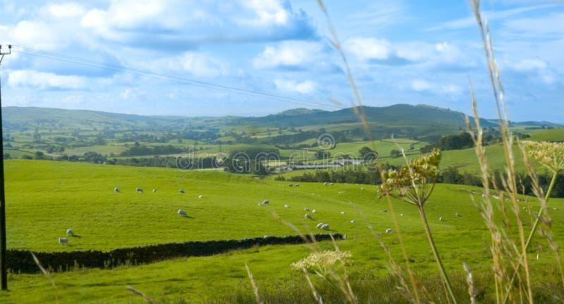 Shap dolina, Cumbria zdjęcia stock