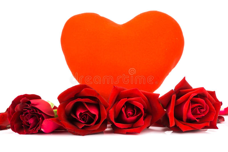 Shape heart and red roses on a white background . Shape heart and red roses on a white background stock photos