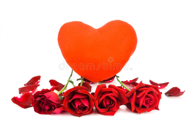 Shape heart and red roses on a white background . Shape heart and red roses on a white background royalty free stock photos