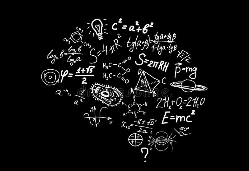 Shape Of Human Brain Of Scienctific Symbols Formulas And Equations