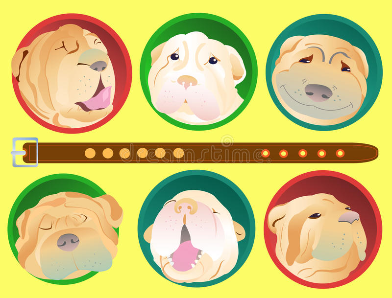 Download Shar Pei dogs stock vector. Image of pile, mammal, doggy - 24839748