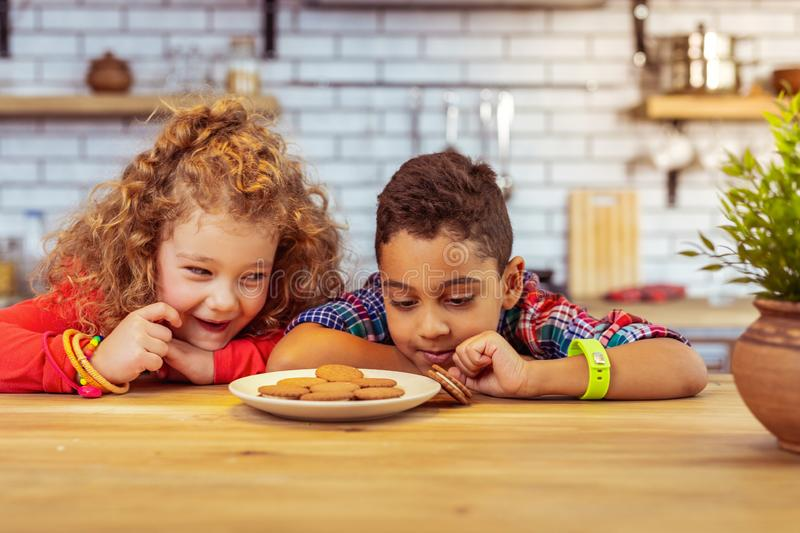 Concentrated brunette boy taking biscuit from plate. Share with me. Cute little female expressing positivity while communicating with her friend stock image