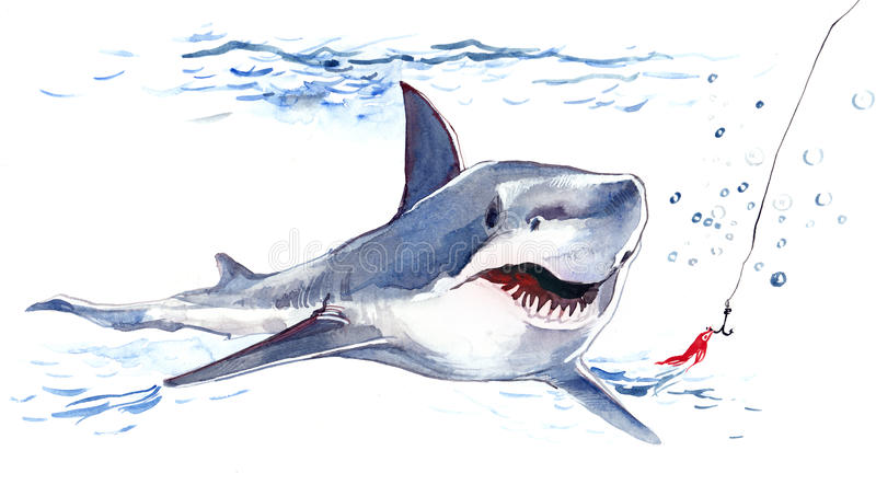 Download Shark stock illustration. Image of great, bait, aggression - 23528412