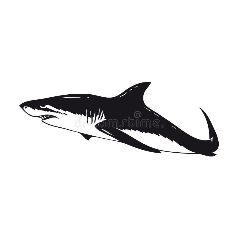 Download Shark stock illustration. Image of black, exclusive, pisces - 4629334