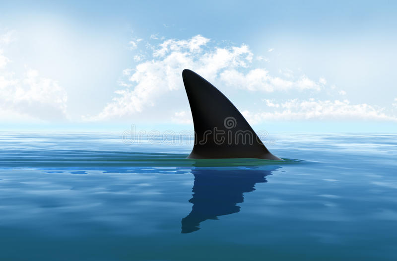 Shark fin above water. Shark fin above the water royalty free illustration