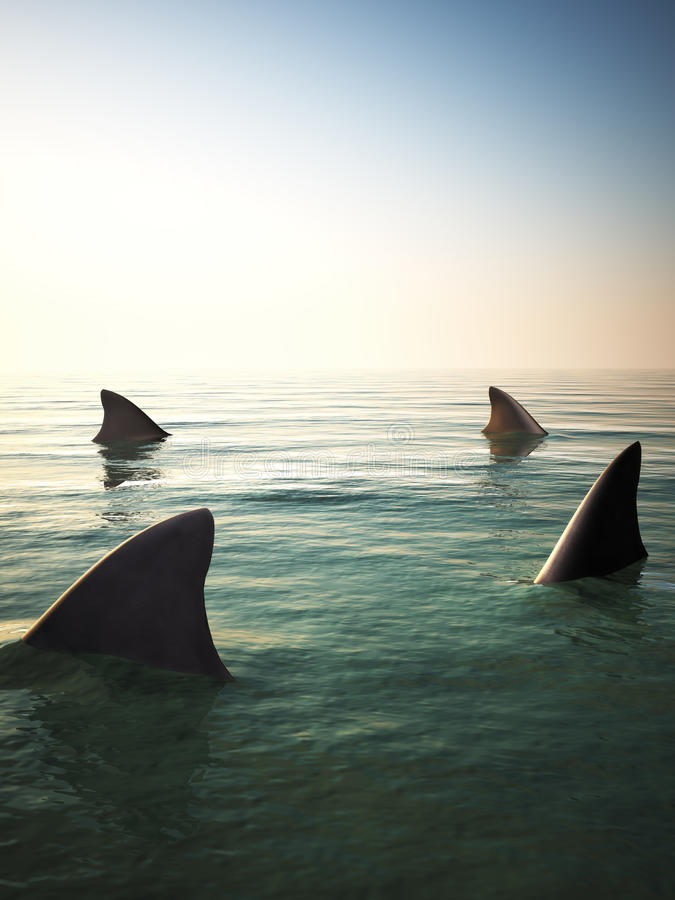 Shark fins circling above the ocean water. 3d rendering vector illustration