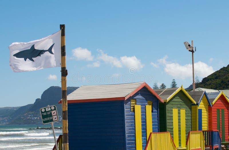 Shark Flag Warning Editorial Photography