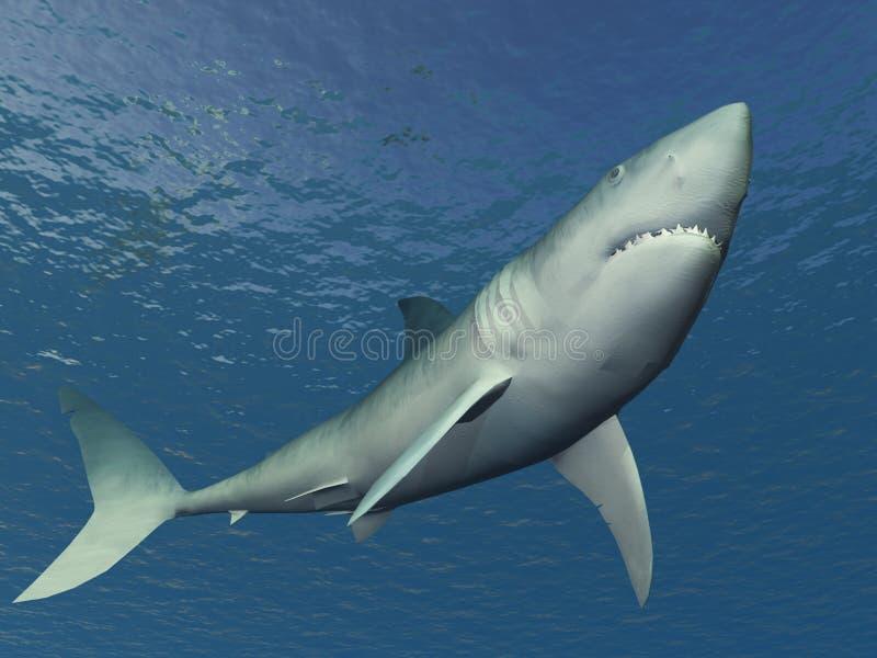 Download Shark Illustration stock illustration. Image of fish, water - 1715196