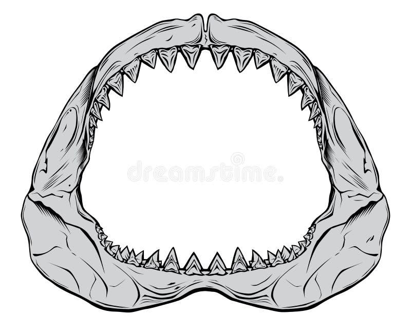 Shark Jaw stock illustration