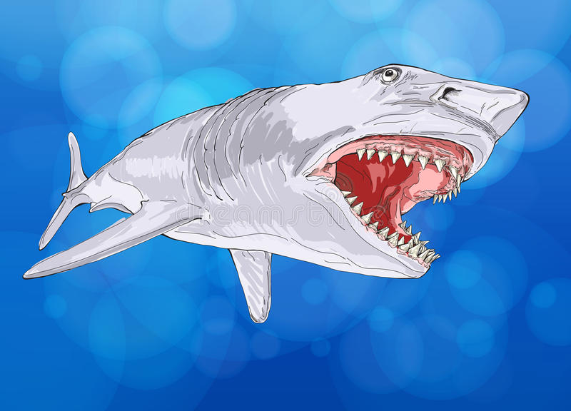 Download Shark with open mouth stock vector. Image of ocean, illustration - 22857958