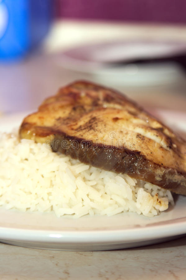 Free Shark Steak With Rice Stock Images - 45565114