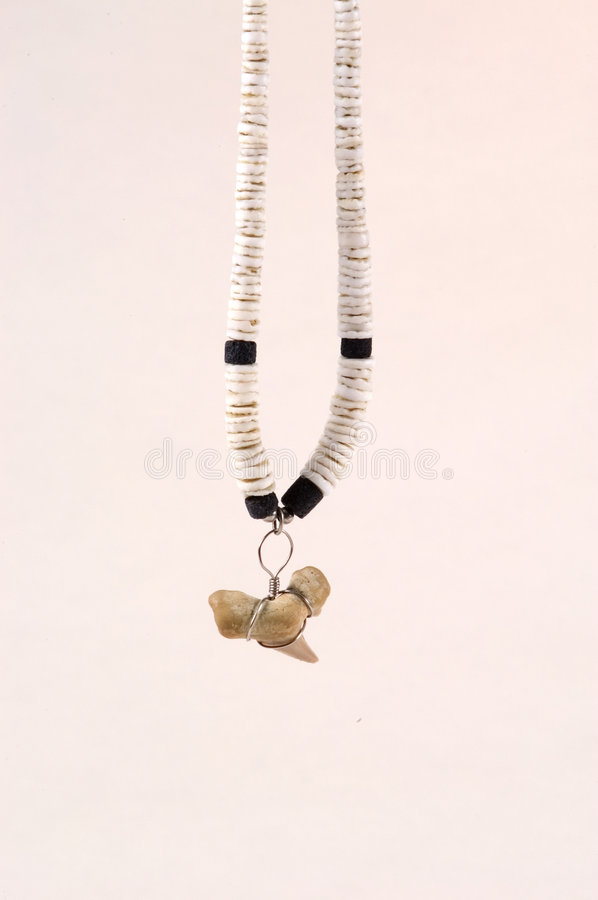 Download Shark Tooth Necklace Stock Photos - Image: 34273
