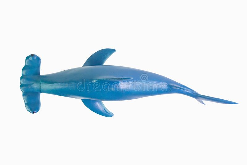 Shark, toy, isolated, background, plastic, animal, fish, cut, life, sea, still, cutout, rubber, ocean, space, fake, toys, wildlife royalty free stock photography