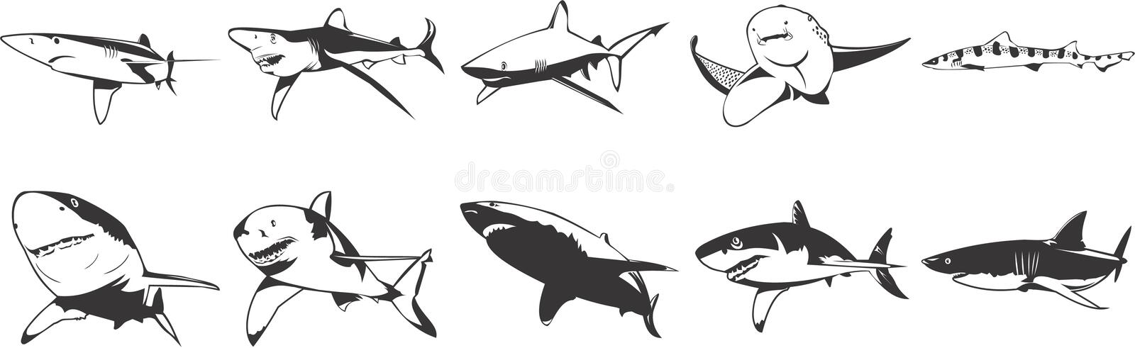 Download Sharks Icons Stock Photos - Image: 5329883
