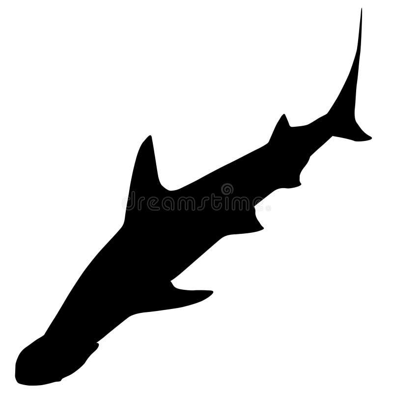 Sharks vector eps illustration by crafteroks stock illustration