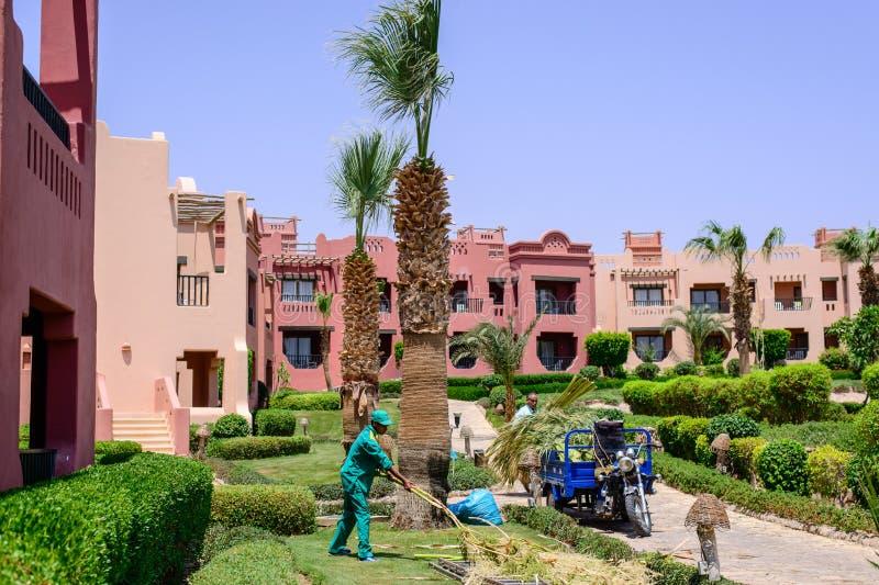 Sharm El谢赫,埃及, 2015年7月28日:完成庭院工作的花匠 库存照片