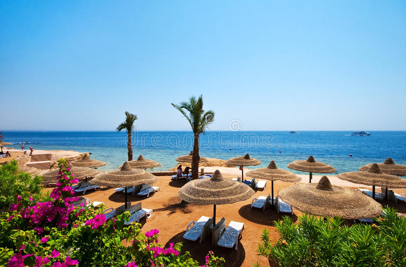Sharm el sheik. Beautiful sunny day on the beach in Sharm el sheik royalty free stock photography
