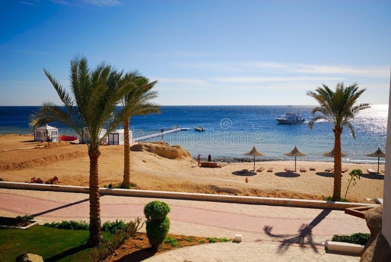 Sharm el sheikh. Beautiful beach and ocean in sharm el sheikh, egypt royalty free stock photos