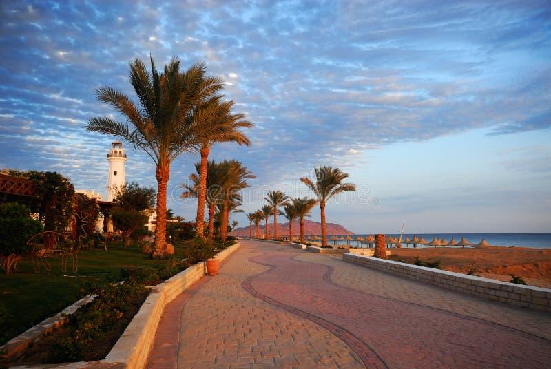 Sharm el sheikh. Beautiful beach and ocean in sharm el sheikh, egypt stock photo