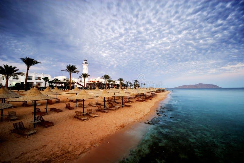 Sharm el sheikh. Beautiful beach and ocean in sharm el sheikh, egypt royalty free stock photo
