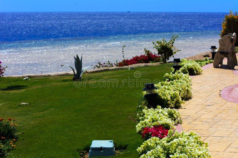 Sharm el-Sheikh, Egipto - 14 de marzo de 2018 Los patios de un hotel blanco magnífico en un día de verano El concepto de turismo, foto de archivo