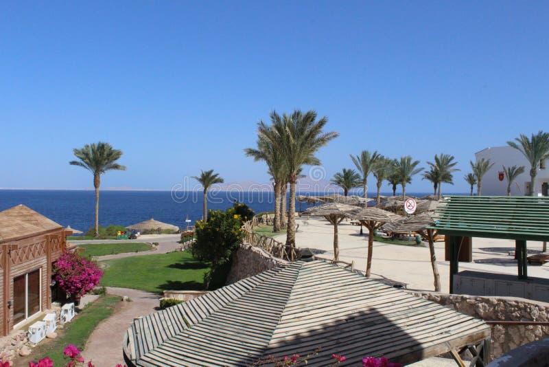 Sharm el Sheikh, Egipto, Sinaí imagen de archivo libre de regalías