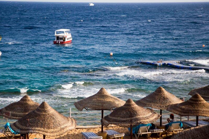 SHARM EL SHEIKH, EGITO - 18 de março de 2019: Costa de Mar Vermelho, hotel da concórdia Praia com guarda-chuvas, camas do sol e p imagem de stock royalty free