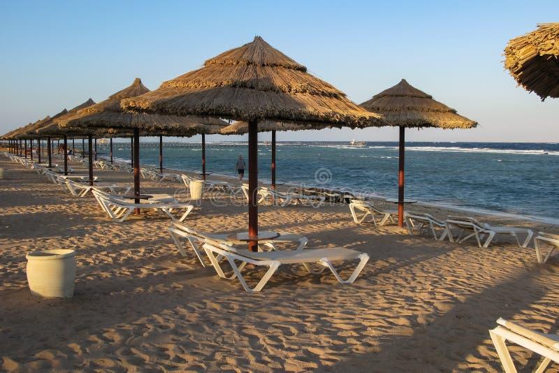 Sharm el Sheikh, Egito, o 27 de novembro de 2017 praia do hotel na costa de Mar Vermelho fotografia de stock royalty free