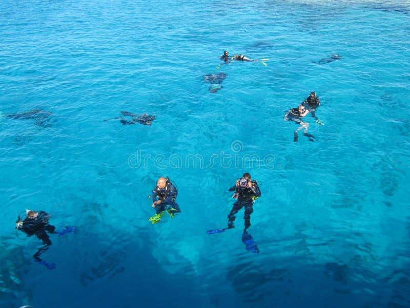 SHARM EL-SHEIKH, EGITTO - 29 dicembre 2009: gli operatori subacquei nuotano in rosso il mare fotografie stock libere da diritti
